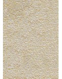 PAILLASSON Haut-de-gamme - Nylon uni blanc cassé - Rectangulaire 90 x 150cm